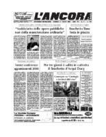N°31 del 31 agosto 2008