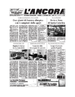 N°42 del 16 novembre 2008